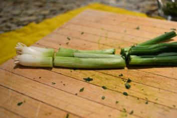 sliced onion close