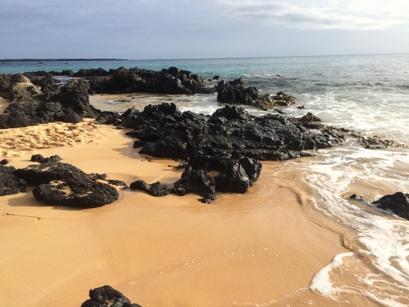 Maui Beaches by Bunny Baubles 11