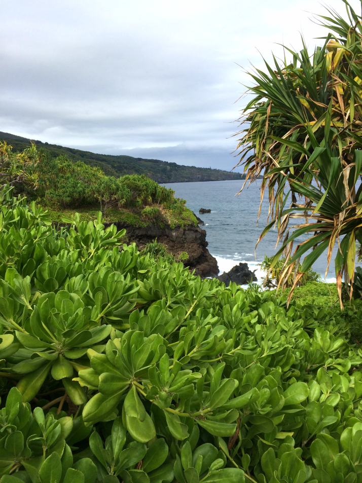 Maui Hawaii Vacation Part 1 by Bunny Baubles Blog 34