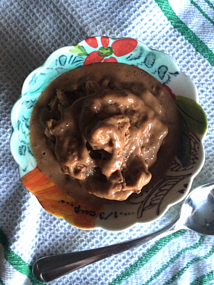 Guilt Free Chocolate Banana Almond Ice Cream by Bunny Baubles Blog 3