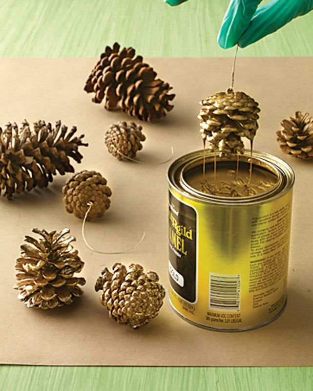 Gold Dipped pinecones