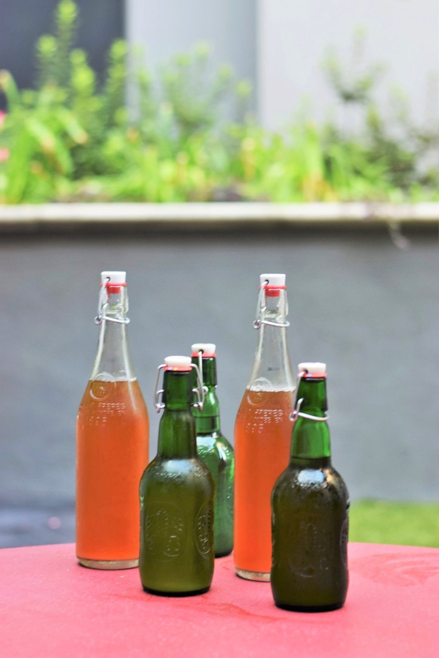 beer-brewing-with-craft-a-brew-by-bunny-baubles-3
